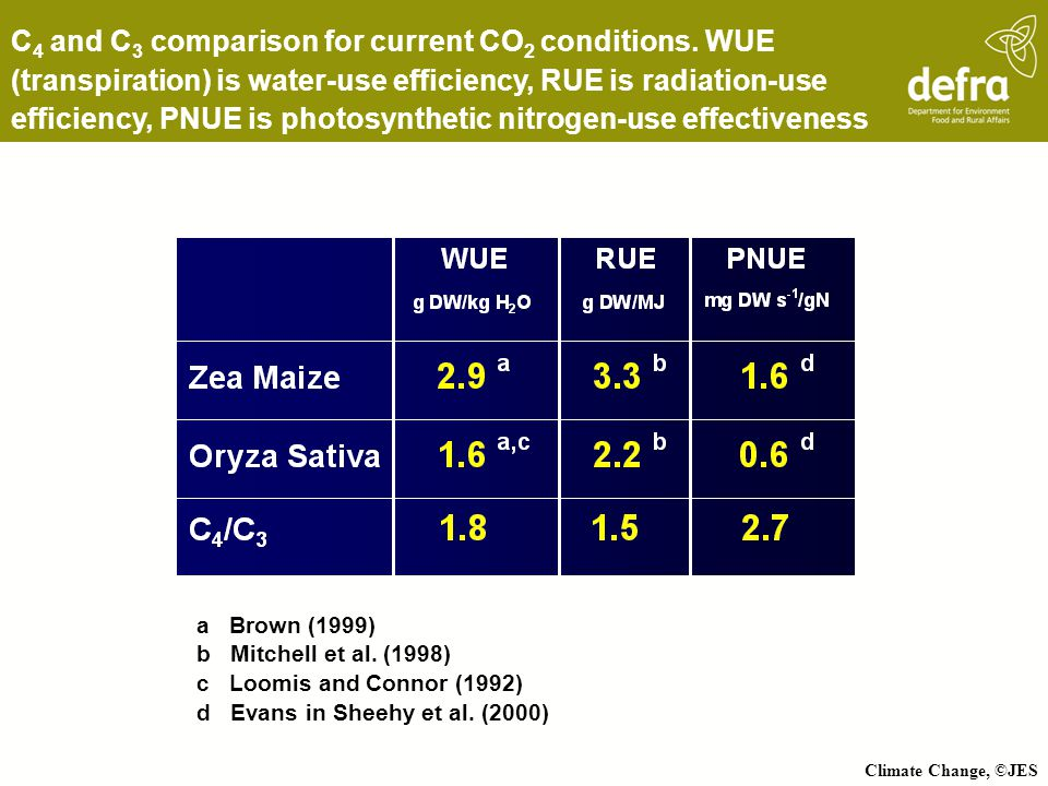Climate Change, ©JES C 4 and C 3 comparison for current CO 2 conditions. WUE (transpiration) is water-use efficiency, RUE is radiation-use efficiency,