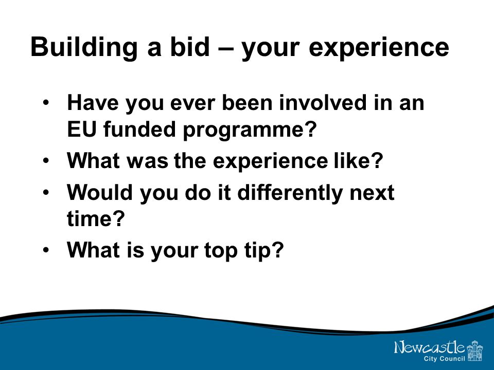 Building a bid – your experience Have you ever been involved in an EU funded programme? What was the experience like? Would you do it differently next