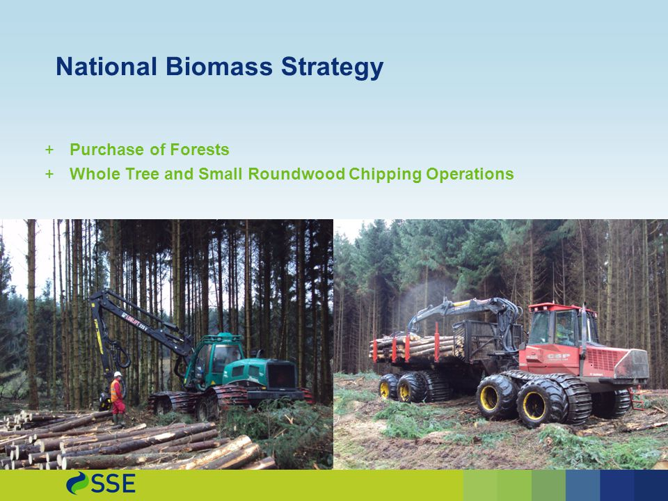 National Biomass Strategy +Purchase of Forests +Whole Tree and Small Roundwood Chipping Operations