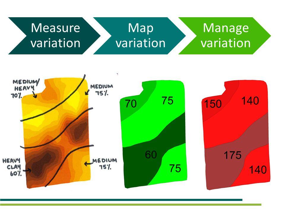 Measure variation Map variation Manage variation