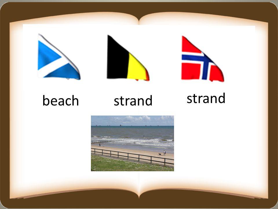 beachstrand