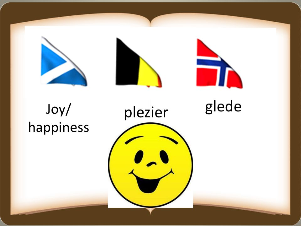 glede Joy/ happiness plezier