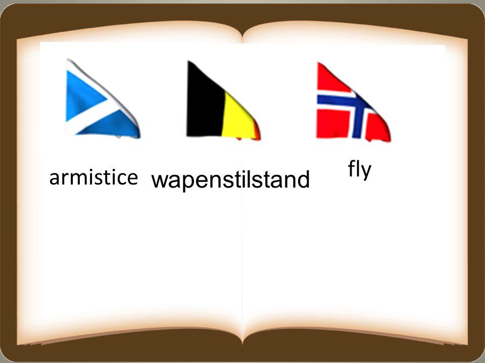 fly armistice wapenstilstand