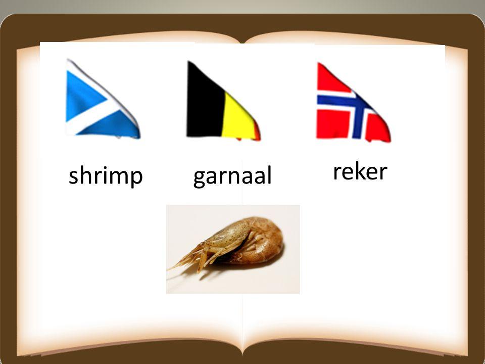 shrimpgarnaal reker