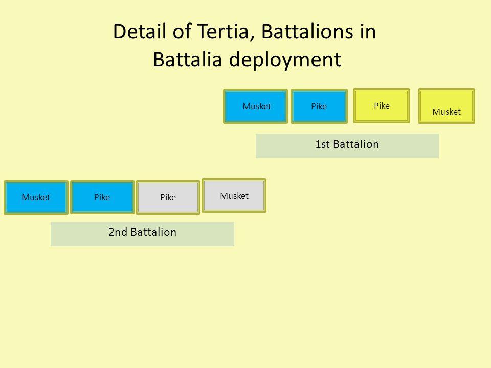 Detail of Tertia, Battalions in Battalia deployment Musket Pike Musket Pike Musket 1st Battalion 2nd Battalion