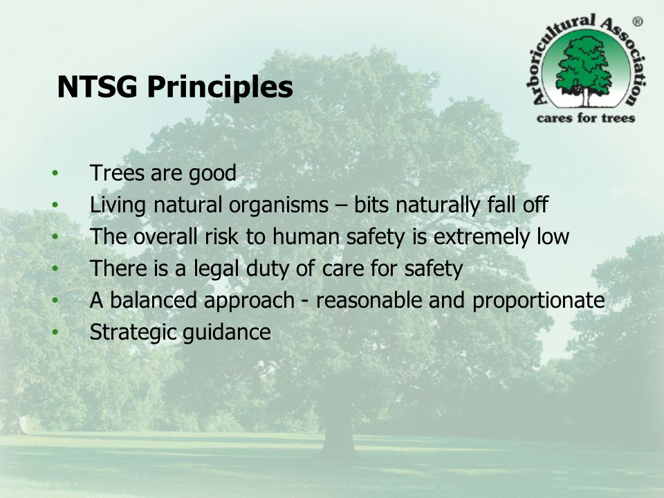 NTSG Principles Trees are good Living natural organisms – bits naturally fall off The overall risk to human safety is extremely low There is a legal duty of care for safety A balanced approach - reasonable and proportionate Strategic guidance
