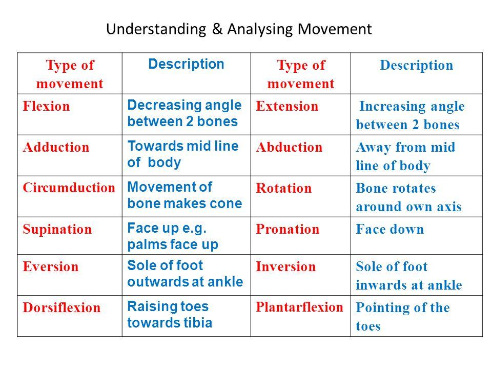 Understanding & Analysing Movement Type of movement Description Type of movement Description Flexion Decreasing angle between 2 bones Extension Increa