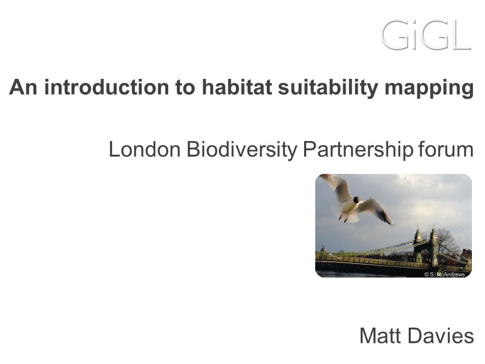 An introduction to habitat suitability mapping London Biodiversity Partnership forum Matt Davies