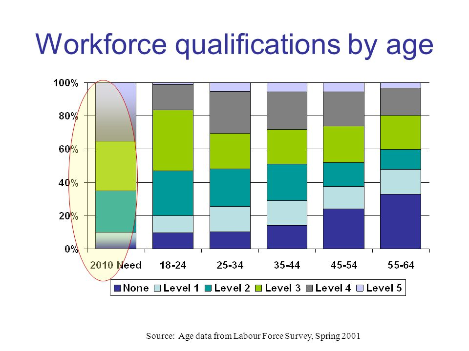 Source: Age data from Labour Force Survey, Spring 2001 Workforce qualifications by age