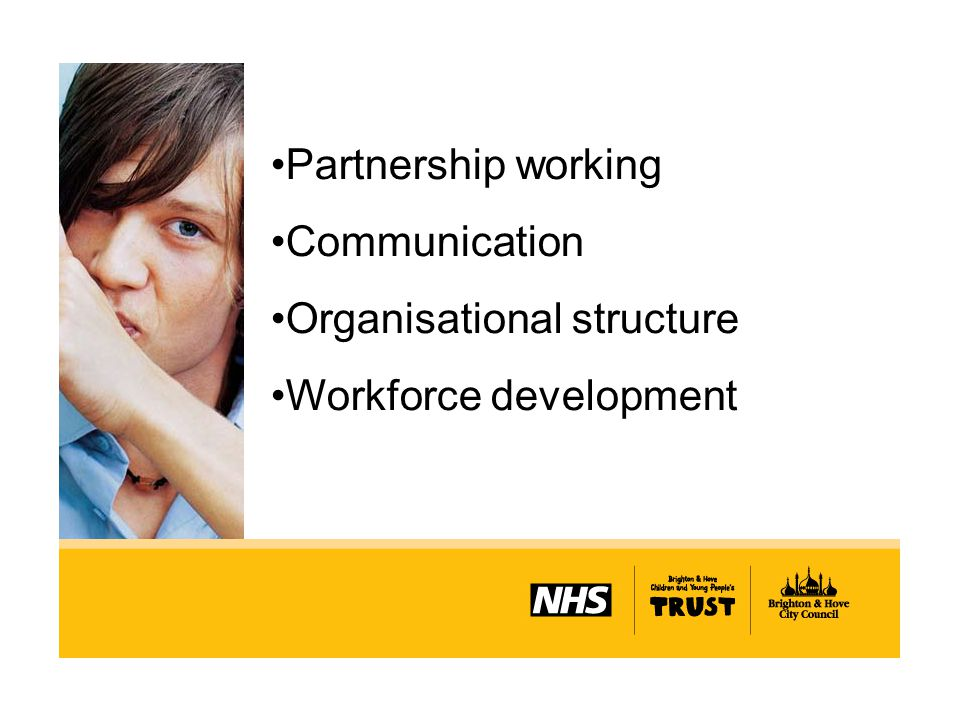 Partnership working Communication Organisational structure Workforce development