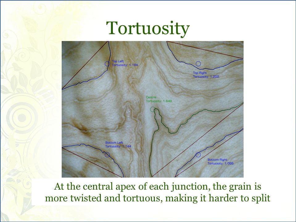 Tortuosity At the central apex of each junction, the grain is more twisted and tortuous, making it harder to split