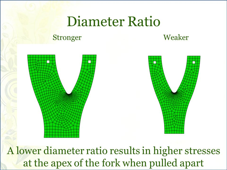Diameter Ratio A lower diameter ratio results in higher stresses at the apex of the fork when pulled apart Stronger Weaker