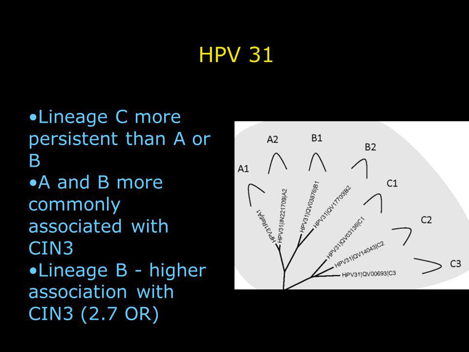 Lineage C more persistent than A or B A and B more commonly associated with CIN3 Lineage B - higher association with CIN3 (2.7 OR) HPV 31