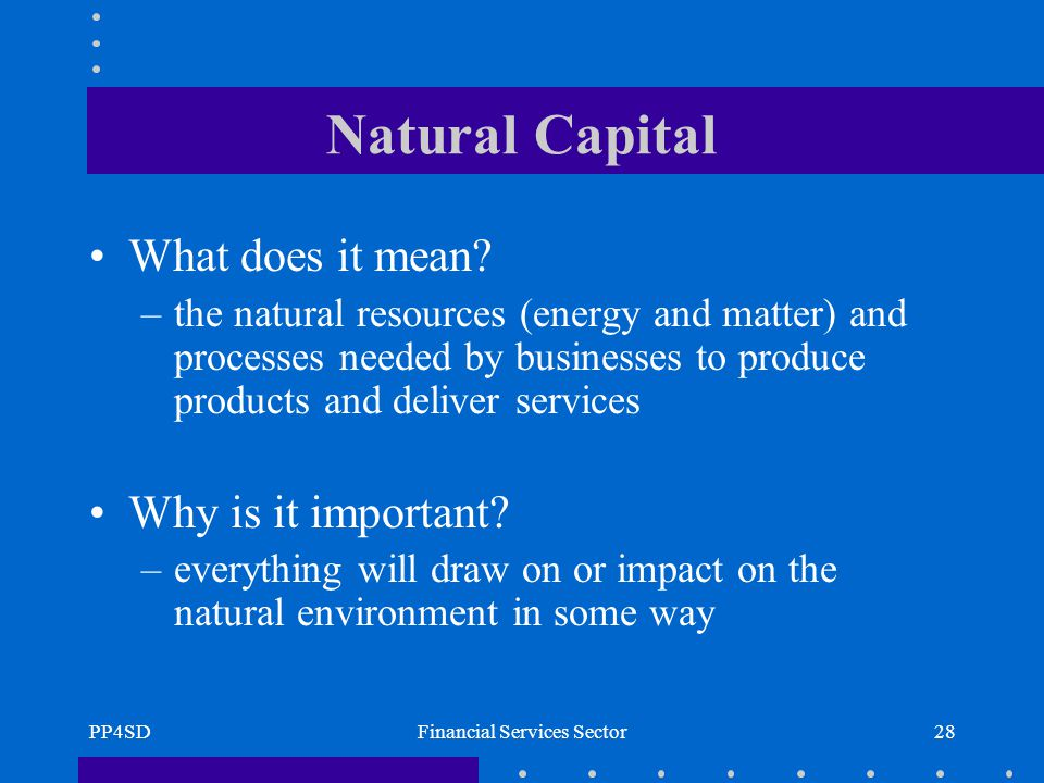 PP4SDFinancial Services Sector28 Natural Capital What does it mean.