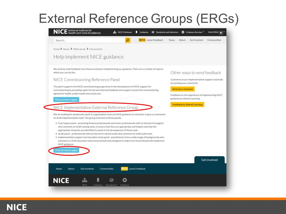 External Reference Groups (ERGs)