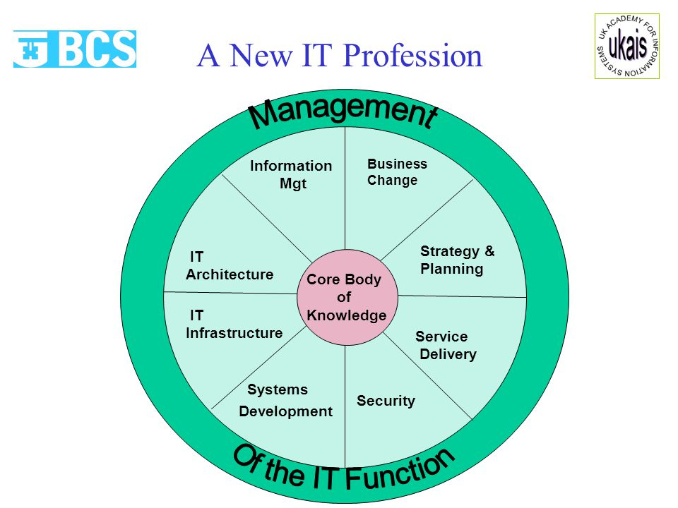 A New IT Profession Source: e-skills UK consultation document Jan 2007