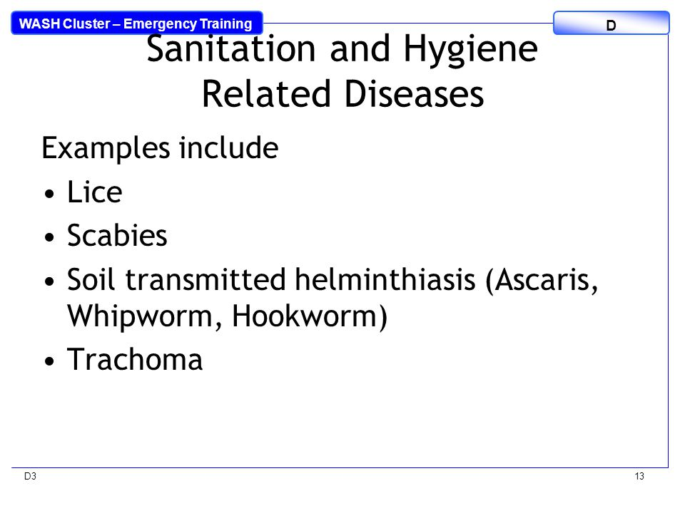 WASH Cluster – Emergency Training D D313 Sanitation and Hygiene Related Diseases Examples include Lice Scabies Soil transmitted helminthiasis (Ascaris, Whipworm, Hookworm) Trachoma