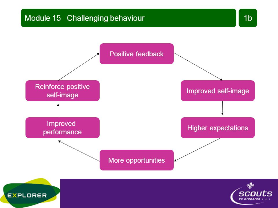 Module 15 Challenging behaviour1a Negative labelling Poor self-esteem Low expectations Fewer chances Reinforced stereotypes Deteriorating skills