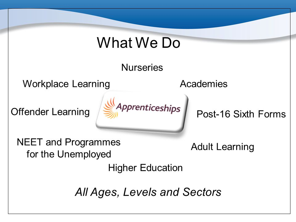 Workplace Learning Nurseries Offender Learning Academies Post-16 Sixth Forms Adult Learning NEET and Programmes for the Unemployed Higher Education Wh