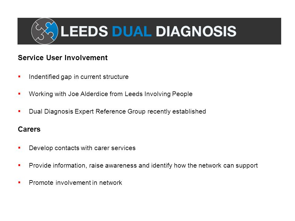 Service User Involvement  Indentified gap in current structure  Working with Joe Alderdice from Leeds Involving People  Dual Diagnosis Expert Reference Group recently established Carers  Develop contacts with carer services  Provide information, raise awareness and identify how the network can support  Promote involvement in network