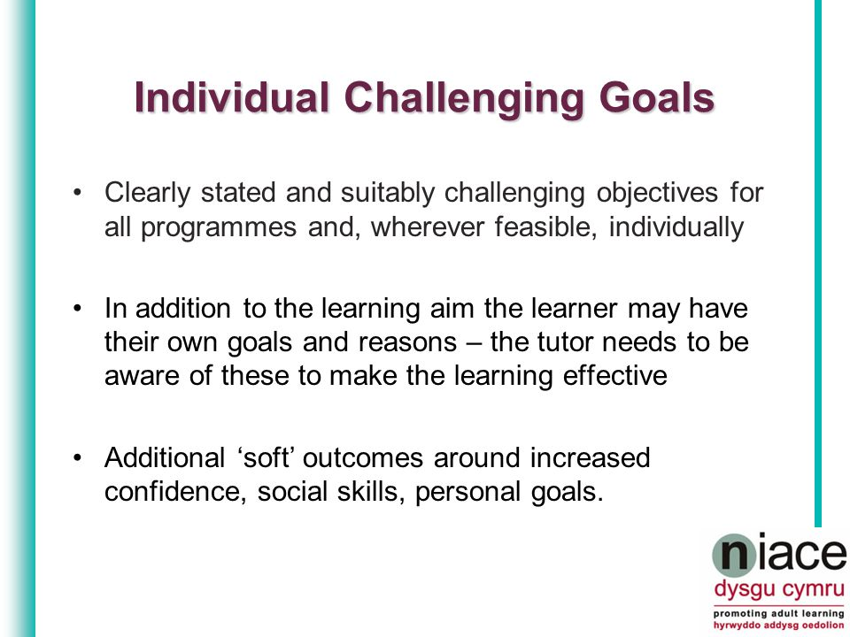 Record of outcomes of process of establishing learners' starting points Previous knowledge and experience Limiting factors or inhibitions Practical support needs Personal aspects of why the learner is there and concerns they may have Initial Assessment