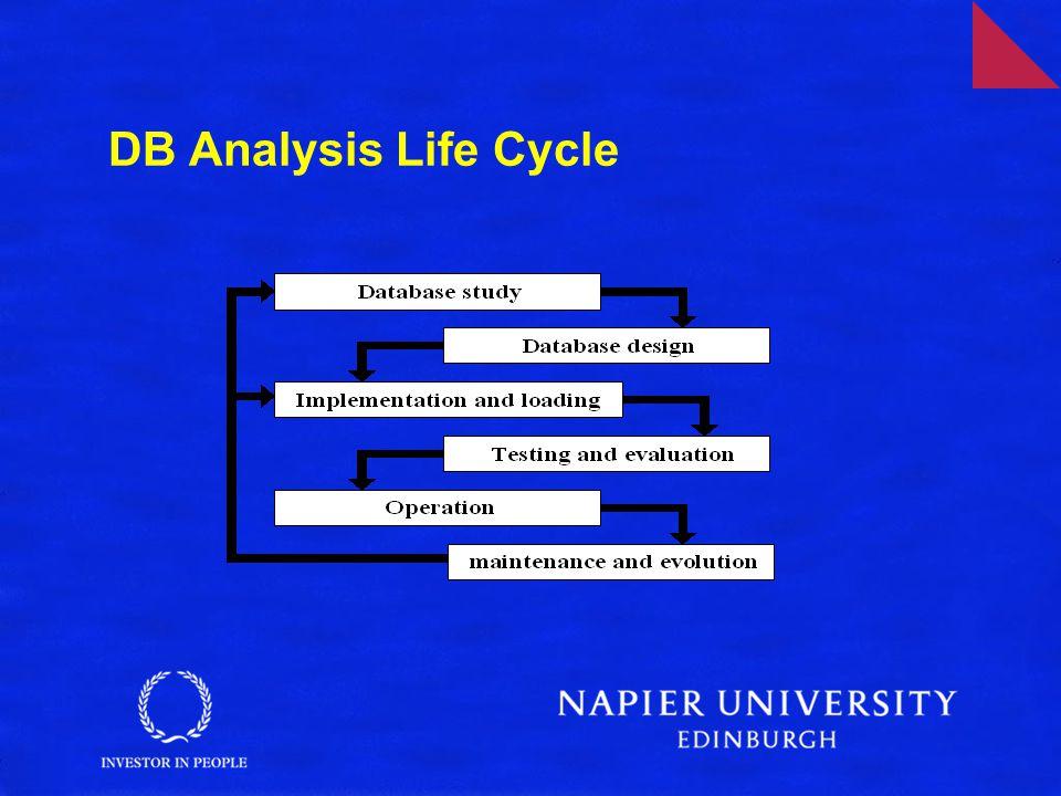 DB Analysis Life Cycle
