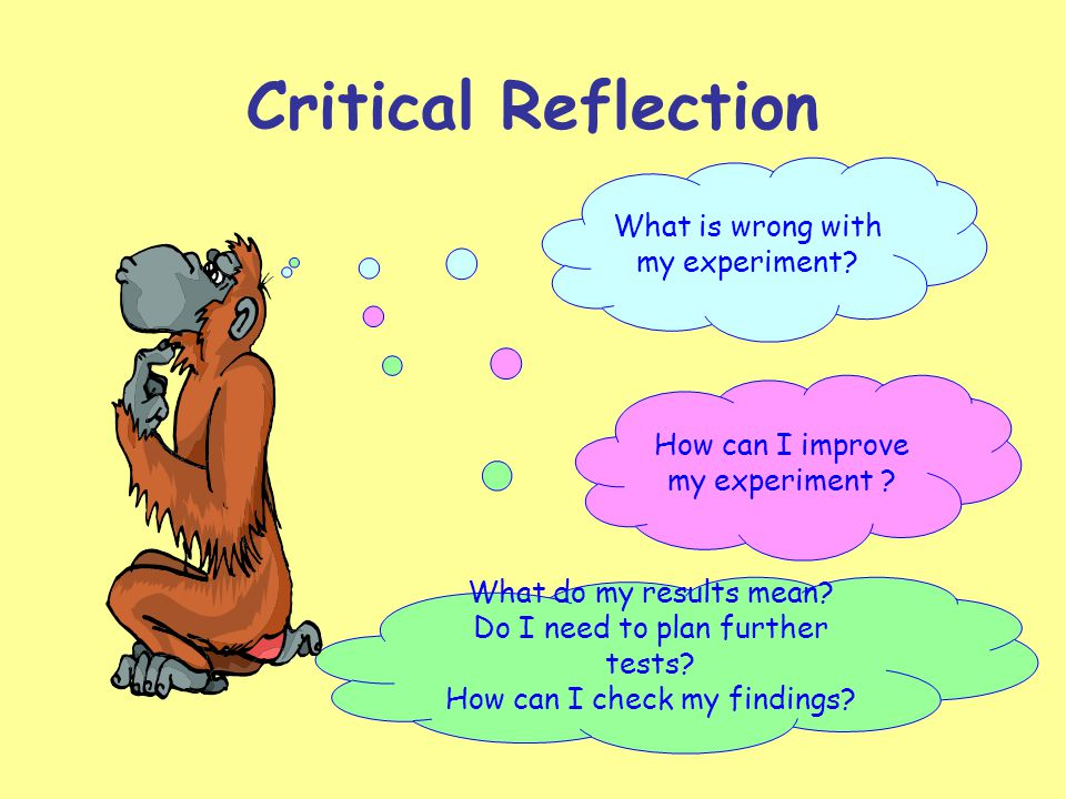Critical Reflection How can I improve my experiment ? What is wrong with my experiment? What do my results mean? Do I need to plan further tests? How