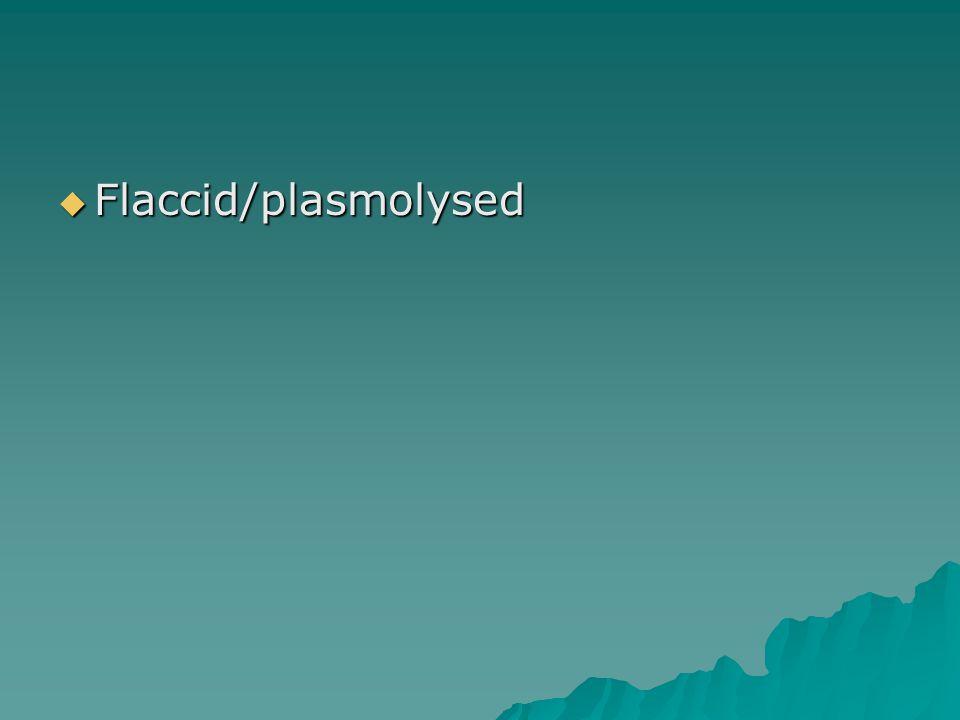  Flaccid/plasmolysed