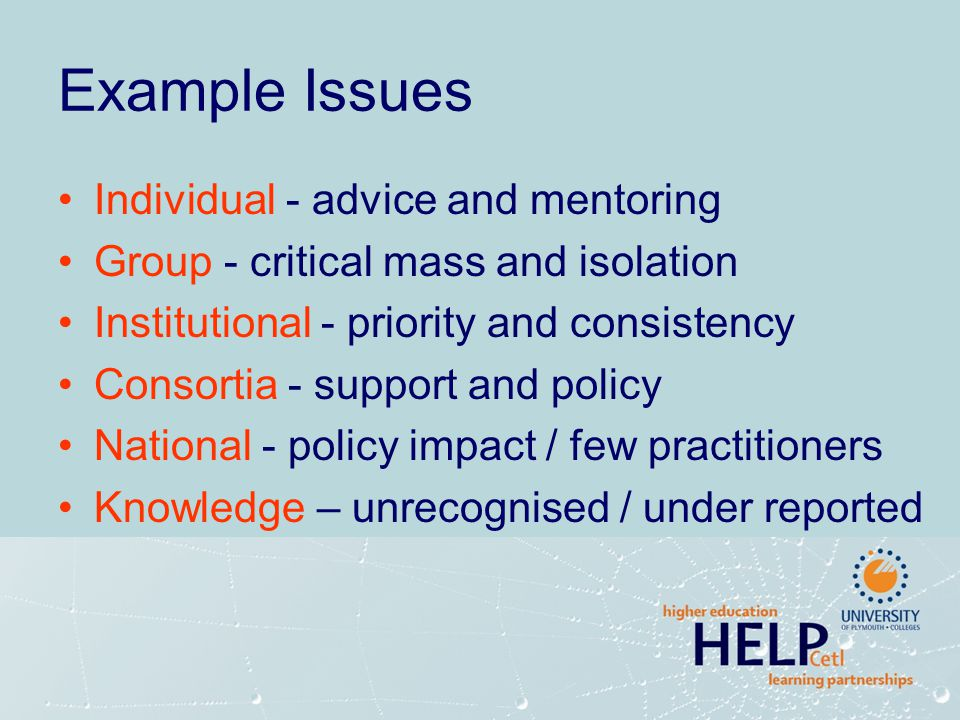 Example Issues Individual - advice and mentoring Group - critical mass and isolation Institutional - priority and consistency Consortia - support and