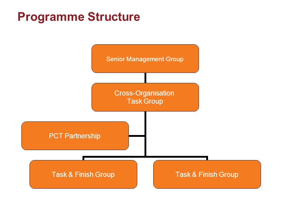 Programme Structure Senior Management Group Cross- Organisation Task Group Task & Finish Group PCT Partnership