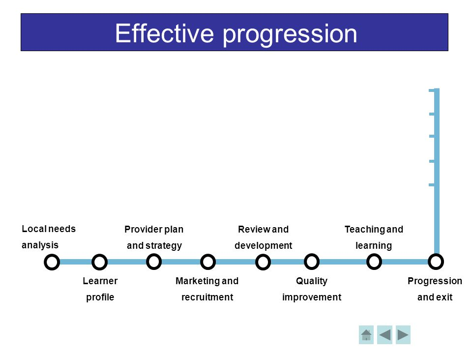 Effective progression Local needs analysis Learner profile Provider plan and strategy Review and development Teaching and learning Progression and exit Marketing and recruitment Quality improvement