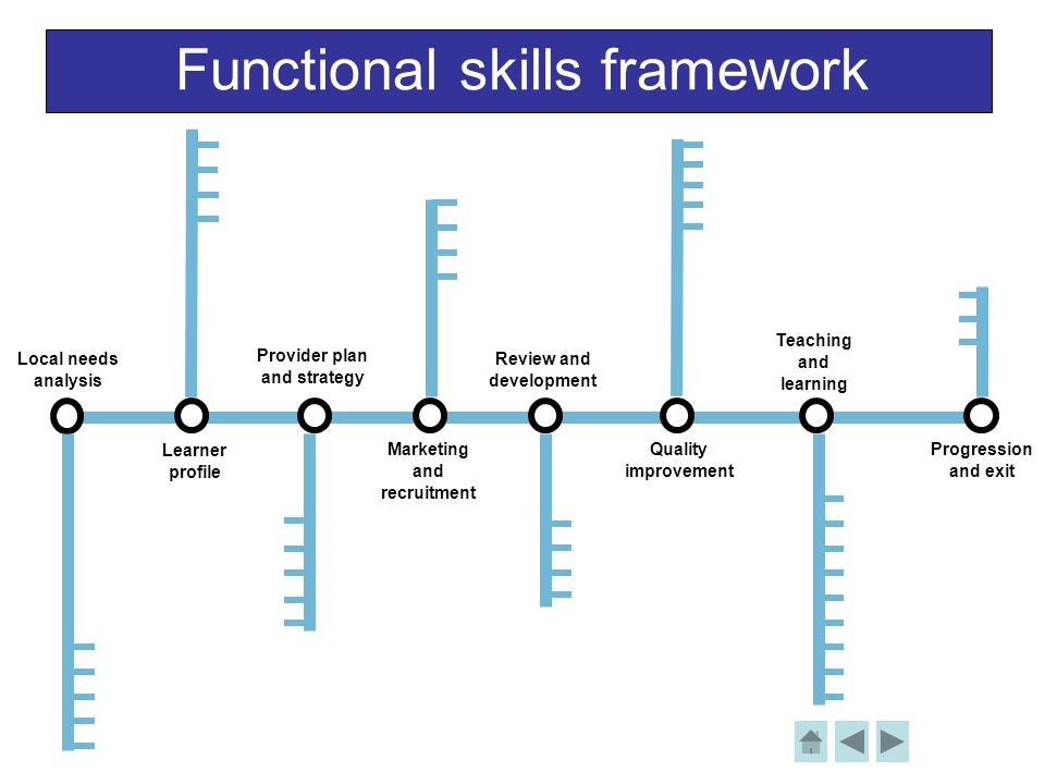 Functional skills framework Local needs analysis Learner profile Provider plan and strategy Review and development Teaching and learning Progression a
