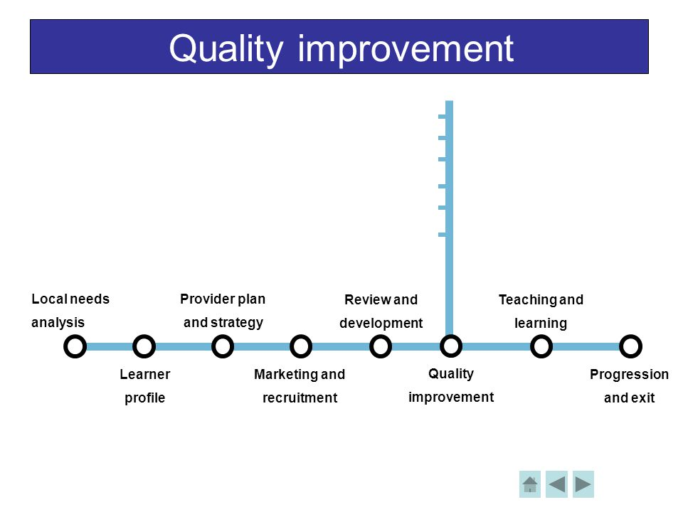 Quality improvement Local needs analysis Learner profile Provider plan and strategy Review and development Teaching and learning Progression and exit