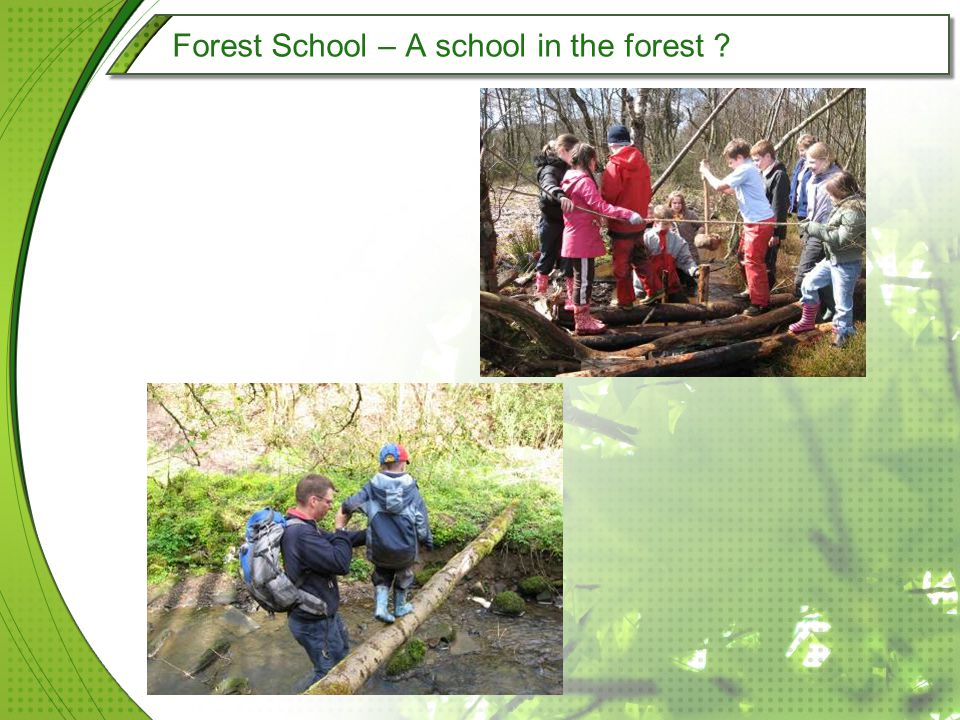 Forest School – A school in the forest