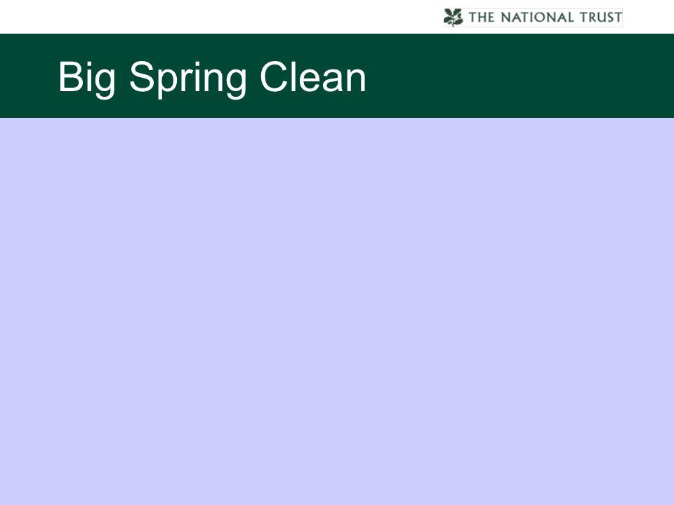 Big Spring Clean