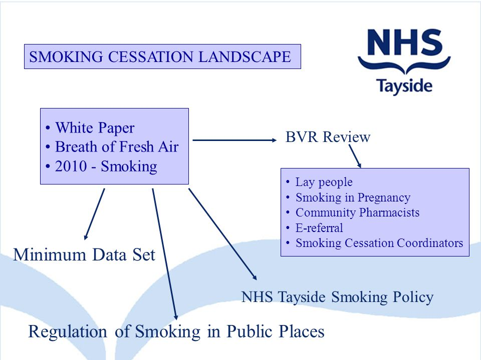 White Paper Breath of Fresh Air 2010 - Smoking Regulation of Smoking in Public Places Minimum Data Set BVR Review Lay people Smoking in Pregnancy Community Pharmacists E-referral Smoking Cessation Coordinators SMOKING CESSATION LANDSCAPE NHS Tayside Smoking Policy