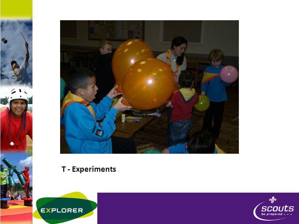 T - Experiments