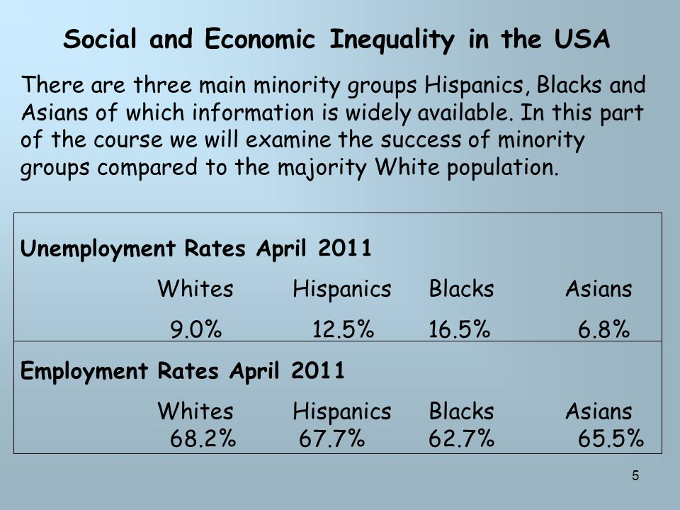 5 Social and Economic Inequality in the USA There are three main minority groups Hispanics, Blacks and Asians of which information is widely available.