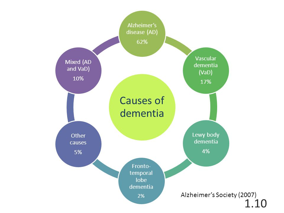 Causes of dementia Alzheimer's disease (AD) 62% Vascular dementia (VaD) 17% Lewy body dementia 4% Fronto- temporal lobe dementia 2% Other causes 5% Mixed (AD and VaD) 10% Alzheimer's Society (2007) 1.10