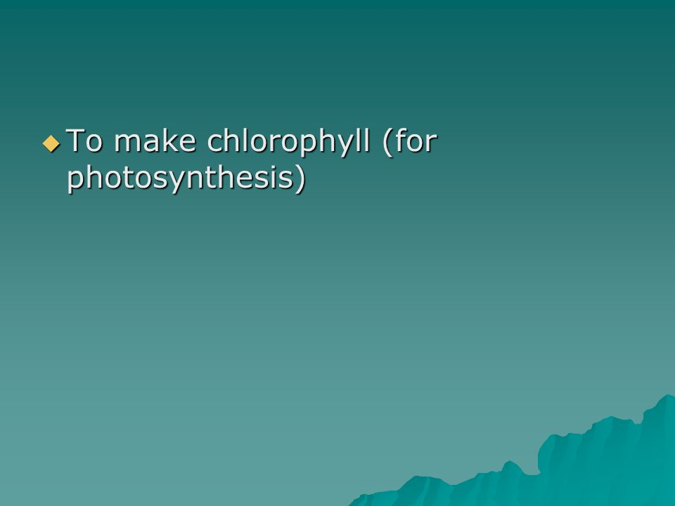 To make chlorophyll (for photosynthesis)