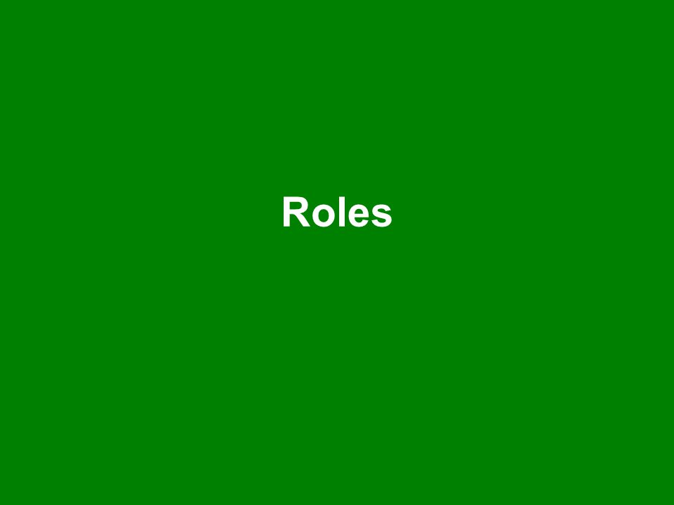 Champions Your role: –To ensure the school commitment to the project is met –To promote Discovering Epping Forest within the school –To meet the responsibilities of the School Group Leader, or ensure another person carries out the duties