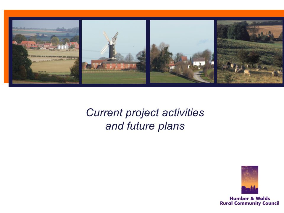 Current project activities and future plans