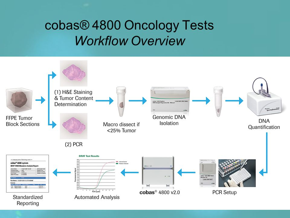 cobas® 4800 Oncology Tests Workflow Overview