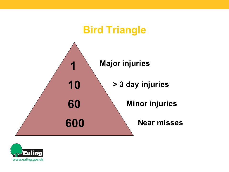 Bird Triangle 1 10 60 600 Major injuries > 3 day injuries Minor injuries Near misses