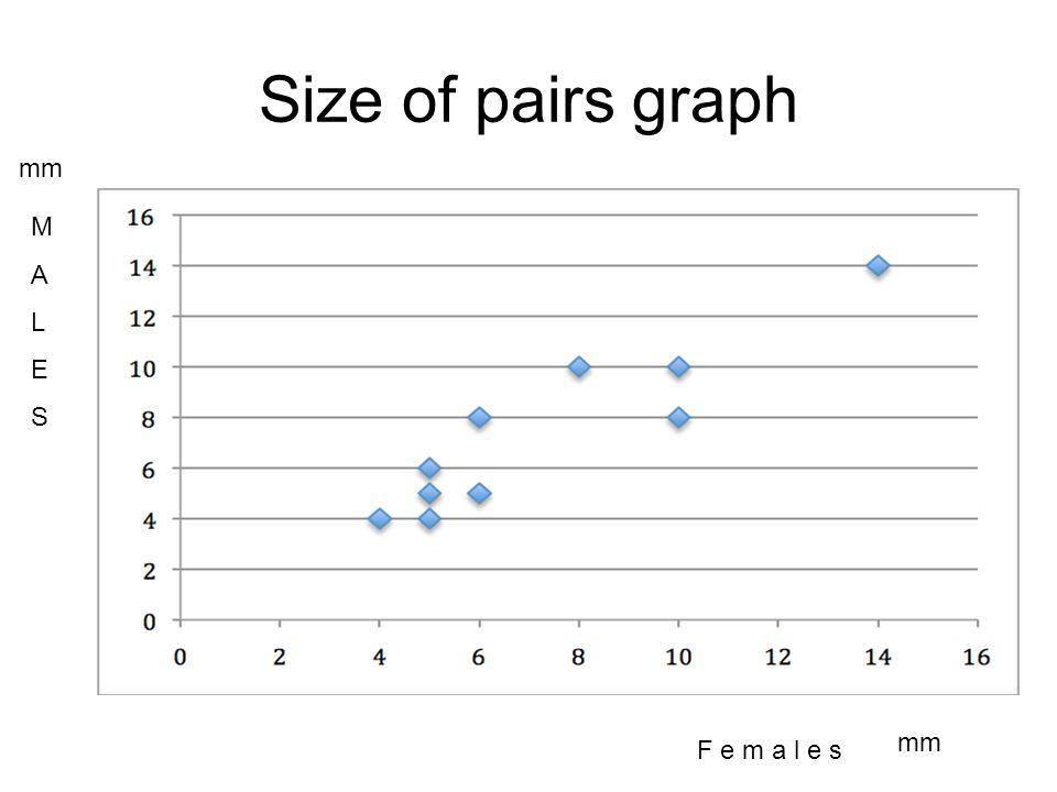 Size of pairs graph F e m a l e s MALESMALES mm