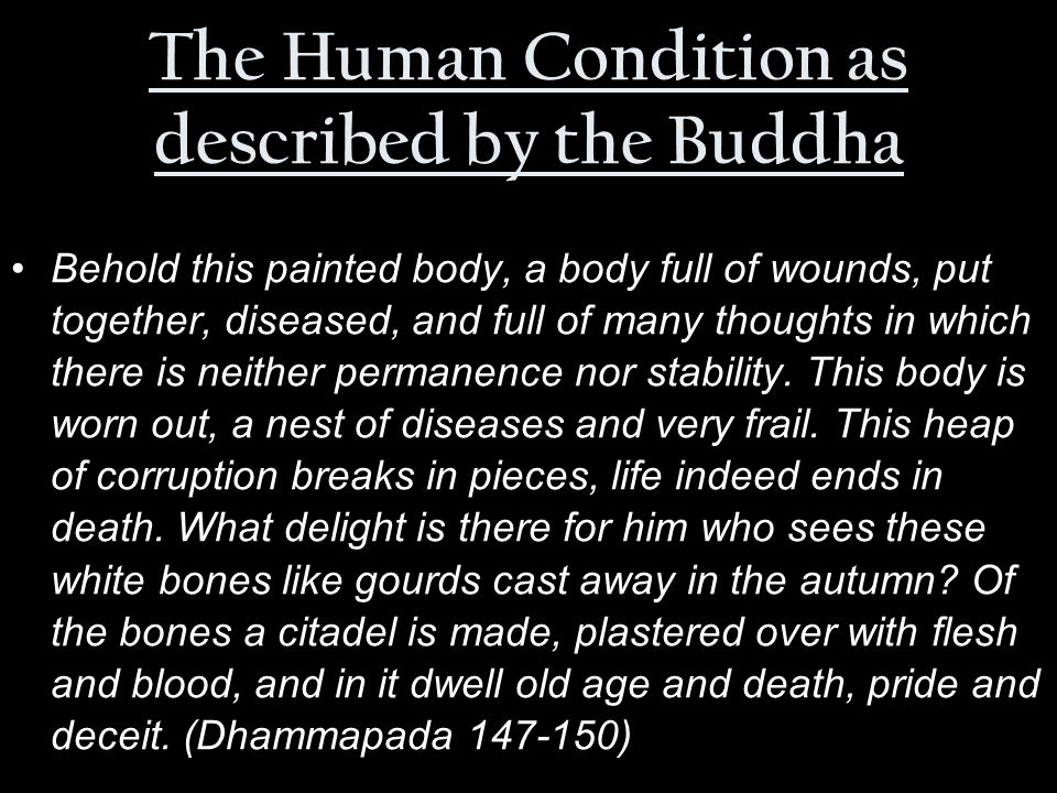 The Human Condition as described by the Buddha Behold this painted body, a body full of wounds, put together, diseased, and full of many thoughts in which there is neither permanence nor stability.