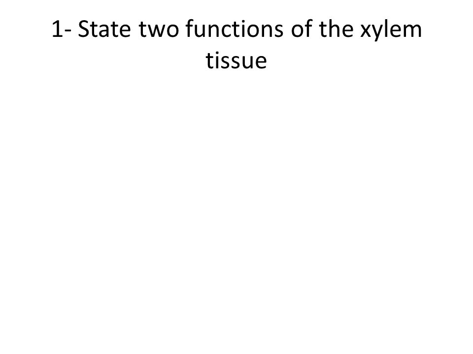 1- State two functions of the xylem tissue