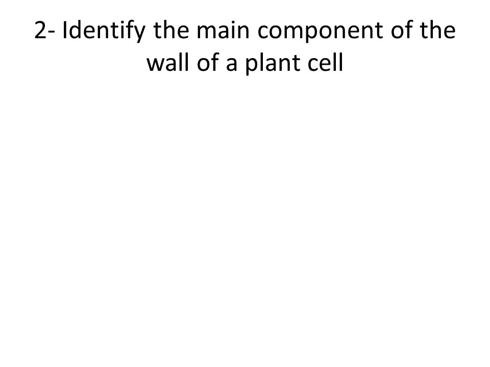 2- Identify the main component of the wall of a plant cell