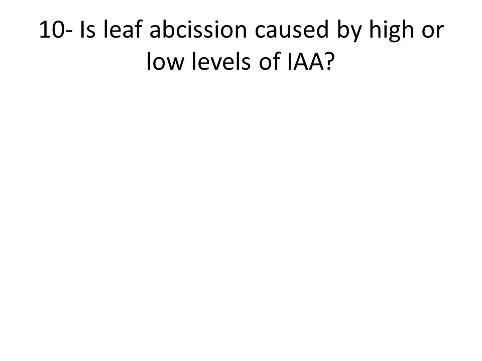 10- Is leaf abcission caused by high or low levels of IAA