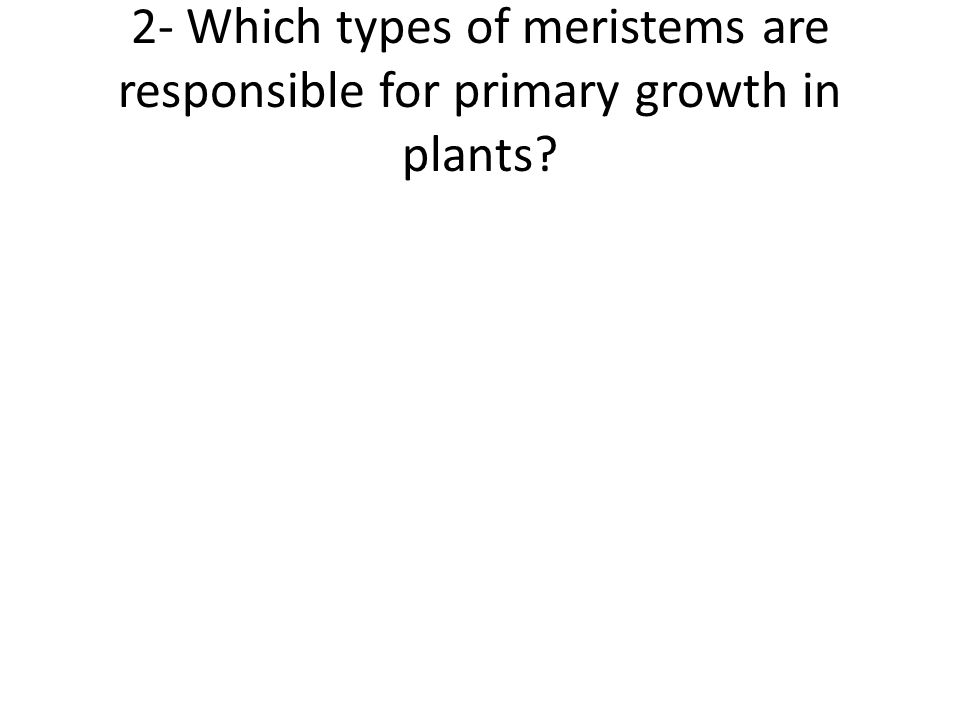 2- Which types of meristems are responsible for primary growth in plants